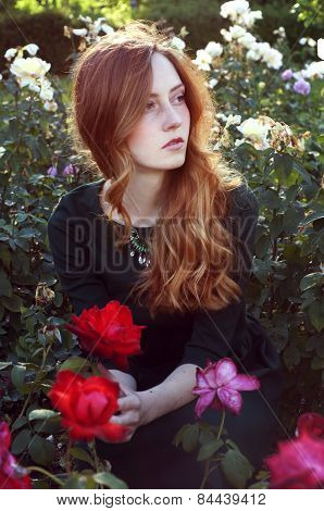 Young Woman With Auburn Hair Sitting In The Rose Garden