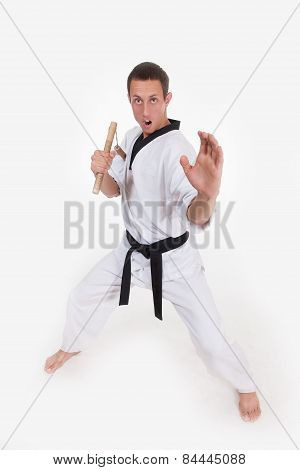 Martial arts fighter