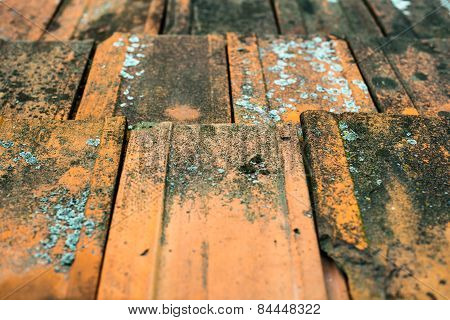 Old Dirty Orange Roof Tiles