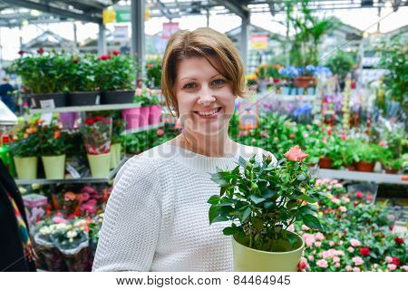 Woman Holding A Flowers Working In Agreenhouse At Garden Center