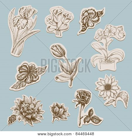 Collection of flowers in tags