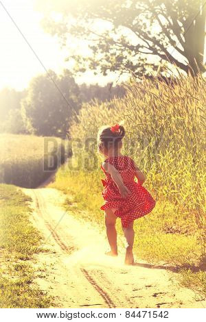 Happy little girl playing on meadow sunset summertime