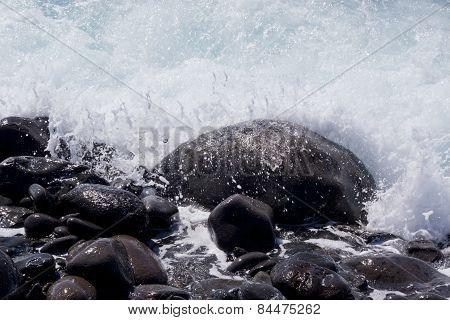 Round stone on coast
