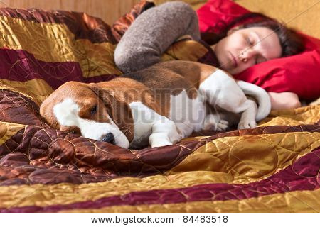 Sleeping Woman And Its Dog