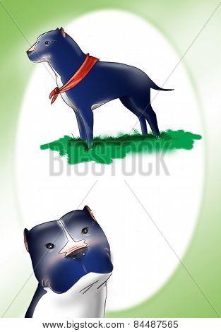Black Pit bull illustration