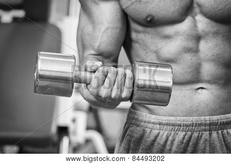 The strong man at the gym doing exercises with heavy weights