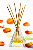 picture of diffusion  - scented diffuser on white background with petals - JPG