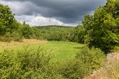 stock photo of greenery  - View of greenery in Calvignac in Lot in France - JPG