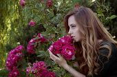 picture of auburn  - Beautiful young woman with auburn hair and green eyes admiring roses in the rosary - JPG