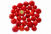 image of strawberry  - One single strawberry is standing out from a crowd of many strawberries - JPG