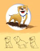 stock photo of pit-bull  - Different point of views of a cartoon pit bull - JPG