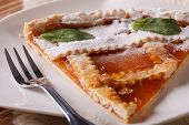 picture of apricot  - Piece of Italian tart with apricot jam on the plate - JPG