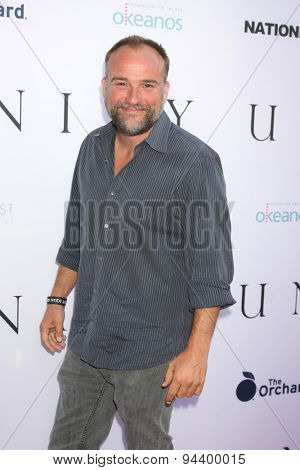 LOS ANGELES - JUN 24:  David DeLuise at the