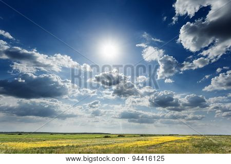 Cultivated Agricultural Fields Towards The Sun