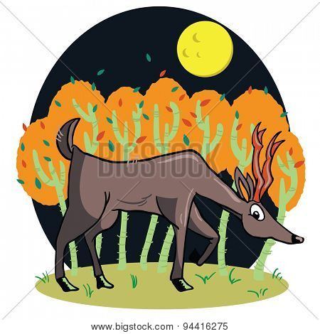 deer cartoon illustration in a field