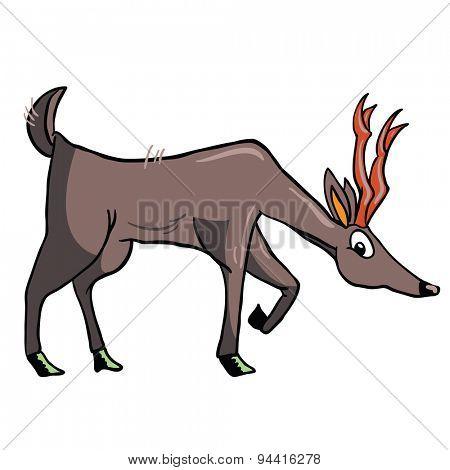 deer cartoon illustration isolated on white
