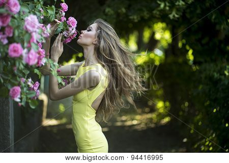 Young Lady And Pink Roses