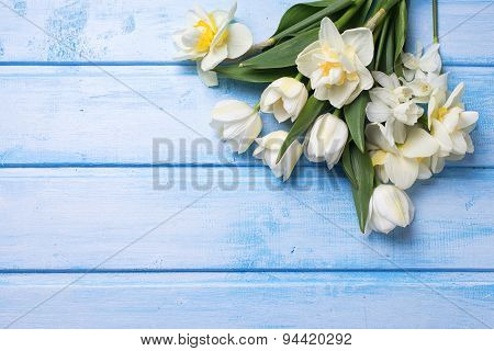 Postcard  With Fresh Narcissus And Tulips Flowers