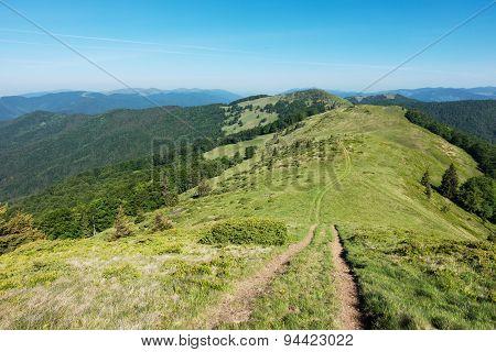Path Through The Amazing Spring Mountain Ridge