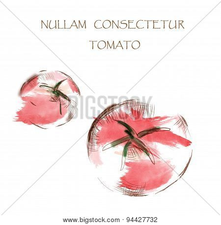 Tomato Watercolor Illustration