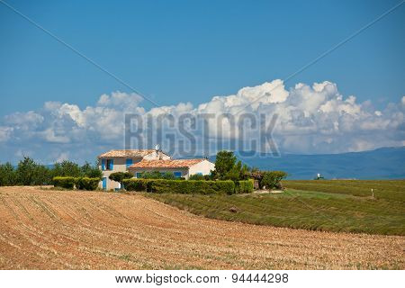 Farmhouse In A Harvested Lavender Field