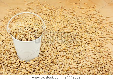 White Bucket With Barley On The Wooden Floor