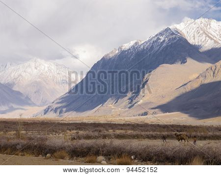 Mountain range and dry land