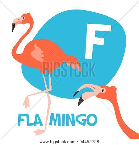 Funny cartoon animals vector alphabet letter set for kids. F is Flamingo