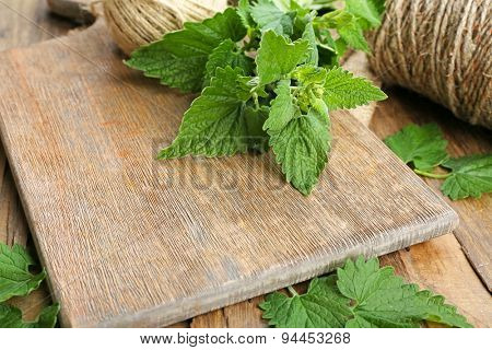 Leaves of lemon balm with scissors and rope on wooden cutting board, closeup