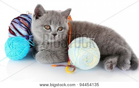 Cute gray kitten with skein of colorful thread isolated on white