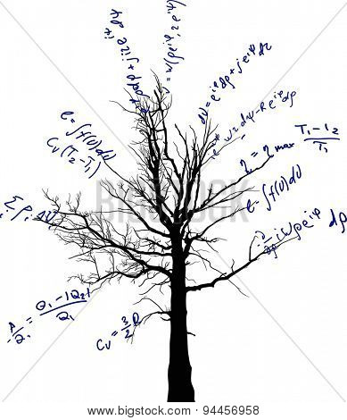 tree with mathematical equations isolated on white background illustration