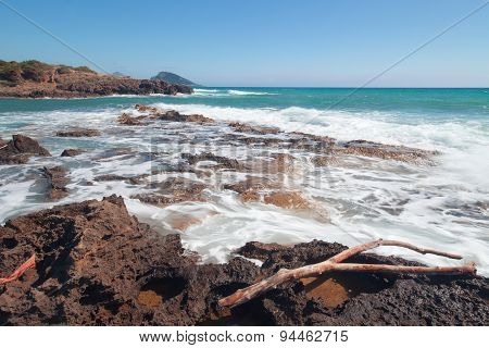 Surf On A Coast