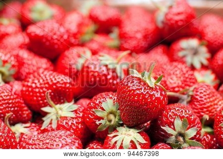 A Bunch Of Ripe Strawberries, Side View