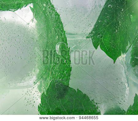 Mojito Background