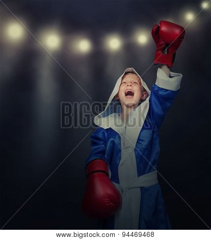 Glory Time For Little Boxer