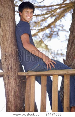 Teenage Boy In Treehouse