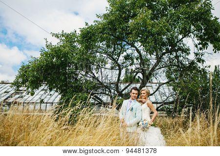 Beautiful Couple Near The Tree