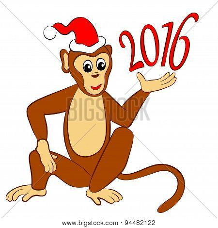 monkey in Santa hat