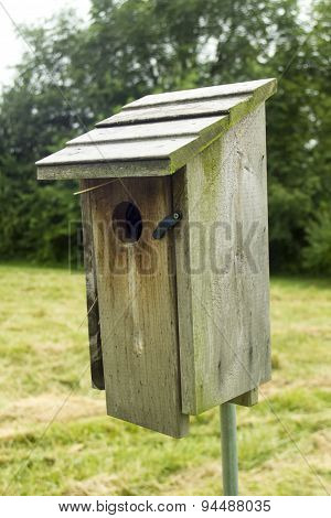 Bird House Out In A Pasture