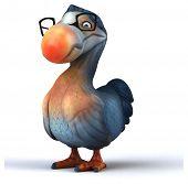 foto of dodo  - Dodo - JPG