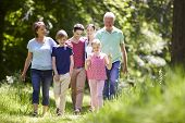 picture of 11 year old  - Multi Generation Family Walking Through Summer Countryside - JPG