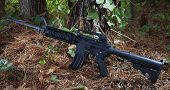 foto of pine-needle  - Black and gray assault rifle in a forest with lots of pine needles - JPG