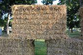 image of threshing  - Straw  - JPG
