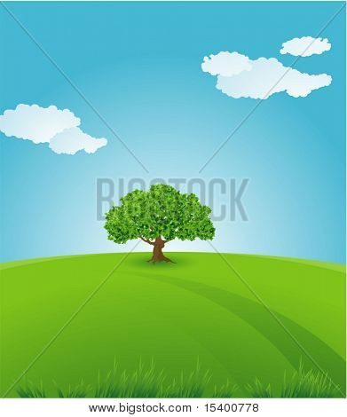 Summer. Vector background.