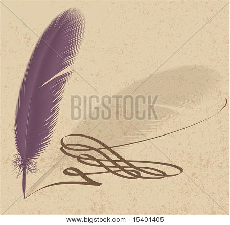 Old paper and feather. Vector.
