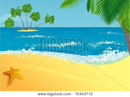 Tropical beach. Vector.