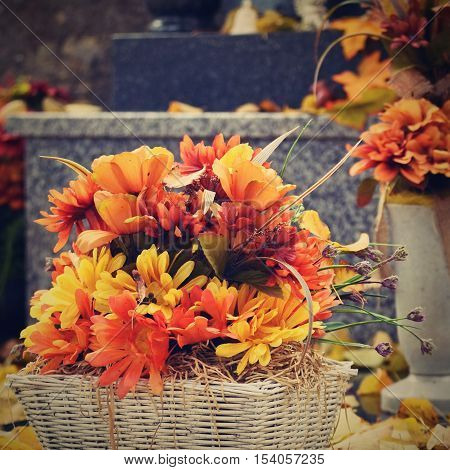 Autumn Nature Concept.beautiful Autumn Decorations. Colorful Autumn Flowers At The Cemetery - Hellow