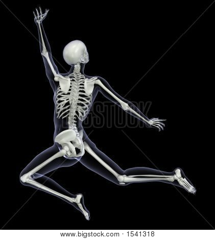 Skeleton Dance Xray Back