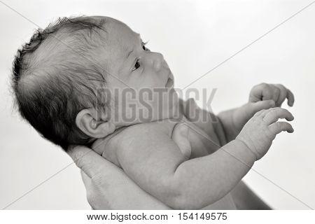 Newborn Baby - Portrait