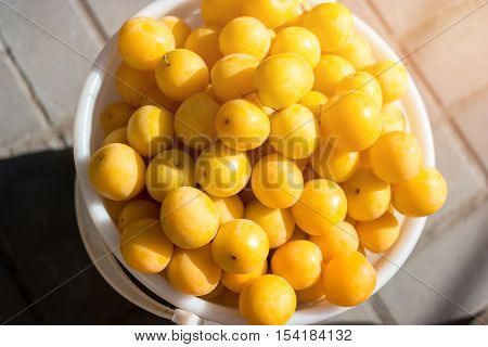 Little yellow fruits. Cherry plums in a bucket. Sell harvest at farmer's market. Quality speaks for itself.